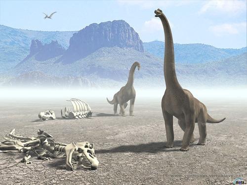 Dinosaur-2-DTEC1774DQ-1024x768.jpg