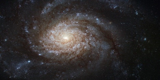 NGC_3810_captured_by_the_Hubble_Space_Telescope.jpg