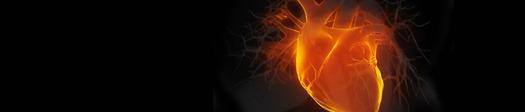 nuclear-cardio
