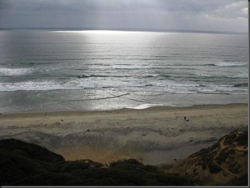 blacks-beach.jpg
