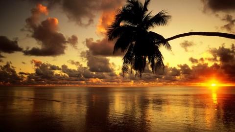 Sunrise-sunrise-beach-1920x1080.jpg
