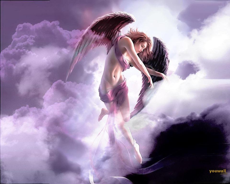 angel01.jpg