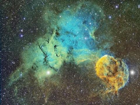 The-Jellyfish-Nebula-ic443_franke.jpg